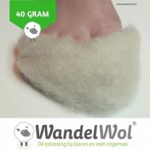 WandelWol 40 gram