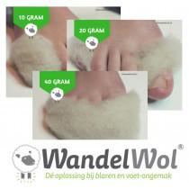 Start Pakket WandelWol